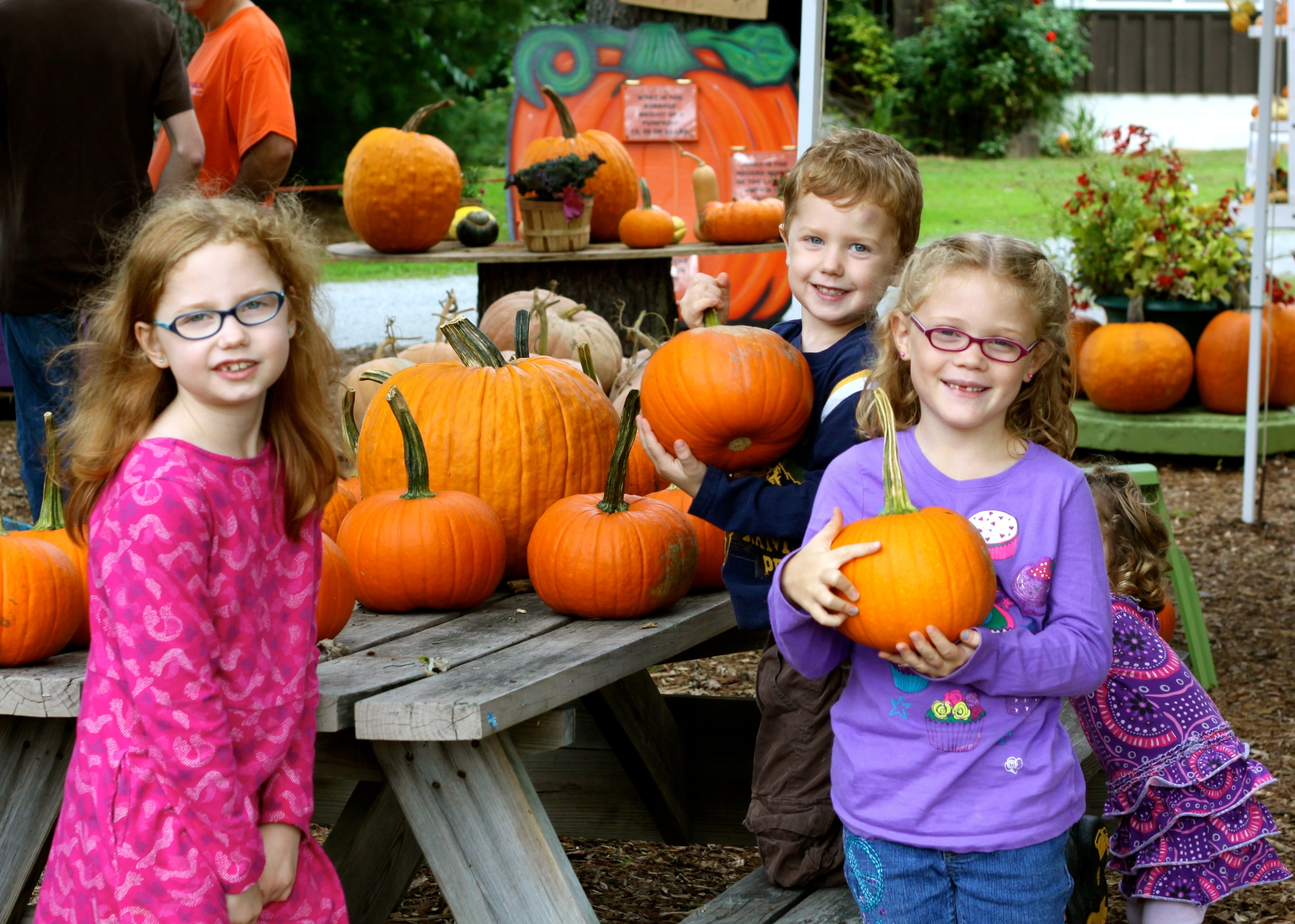Pumpkin picking with the Lydas!