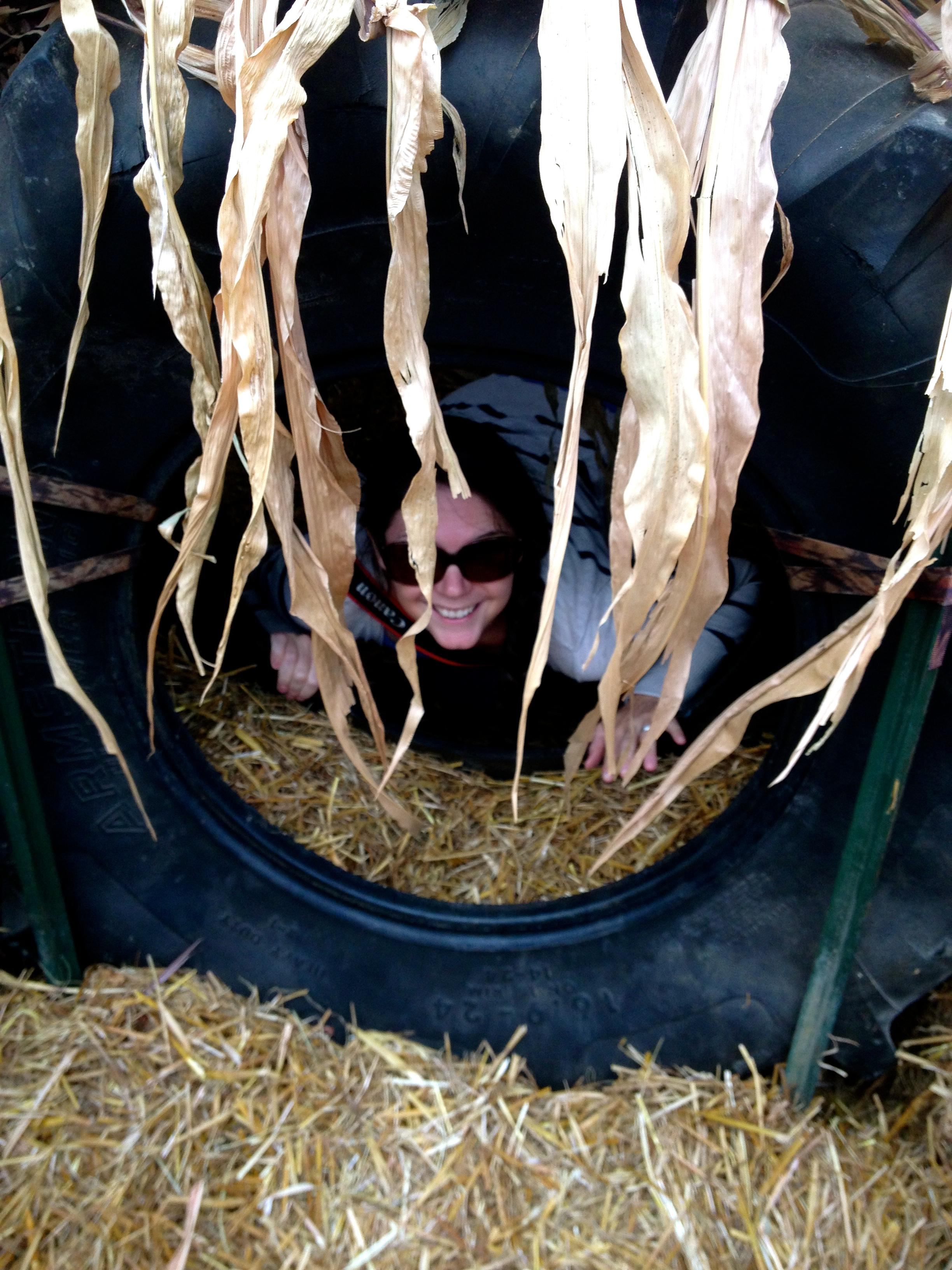 Hiding in the maze