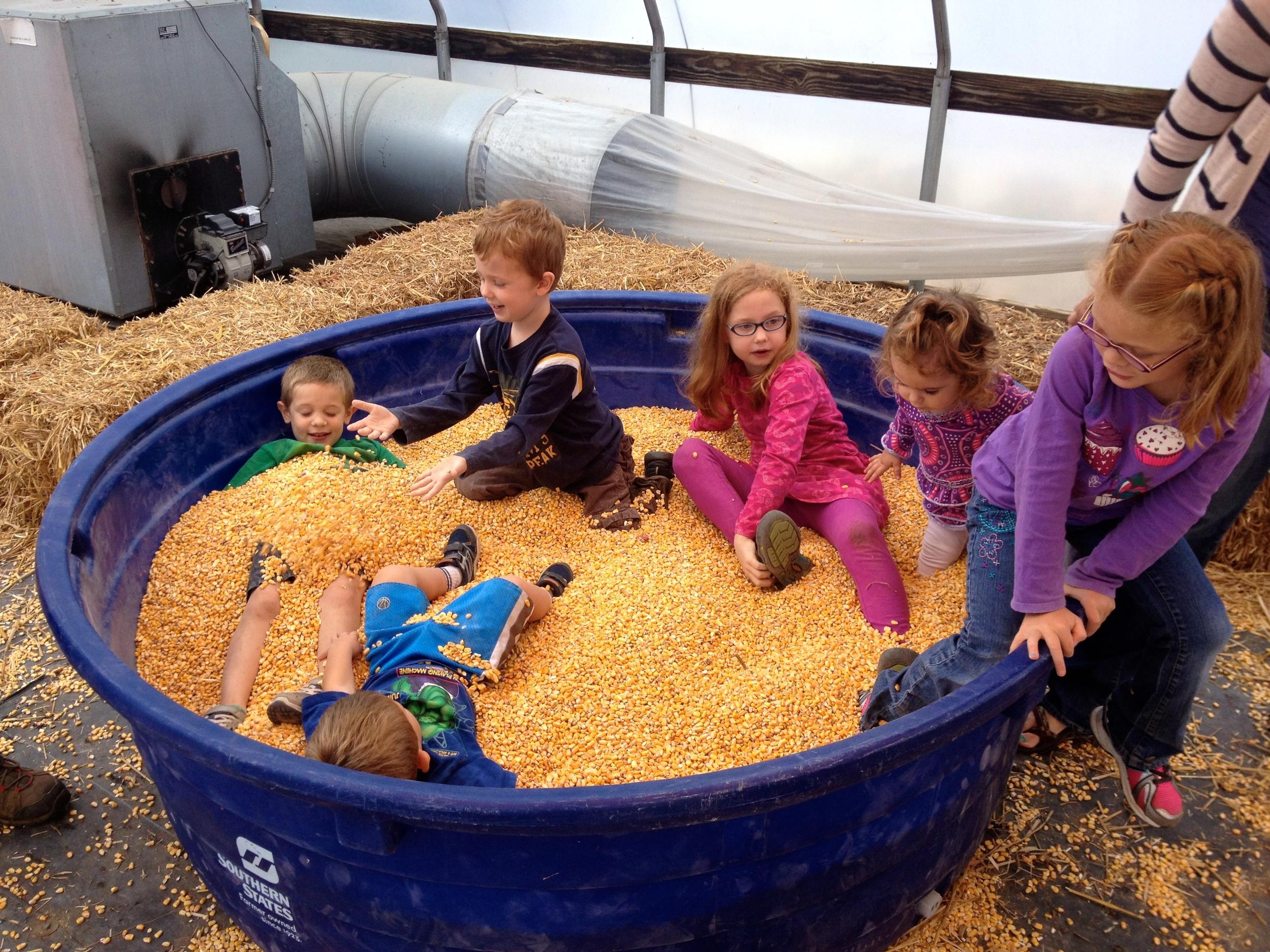 The Lyda-Craig corn pile up