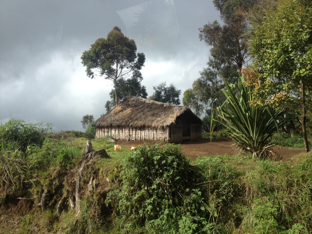 This is a great example of an Enga style house. I haven't seen this shape anywhere else in Papua New Guinea, but they are quite common here.