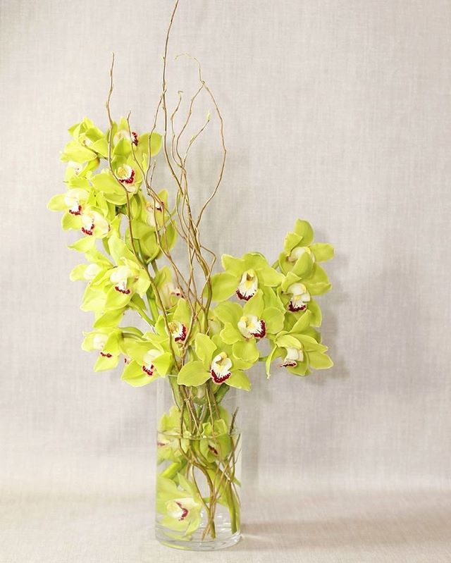 Funky & fresh, this 'mojito' arrangement is perfect for your next event!