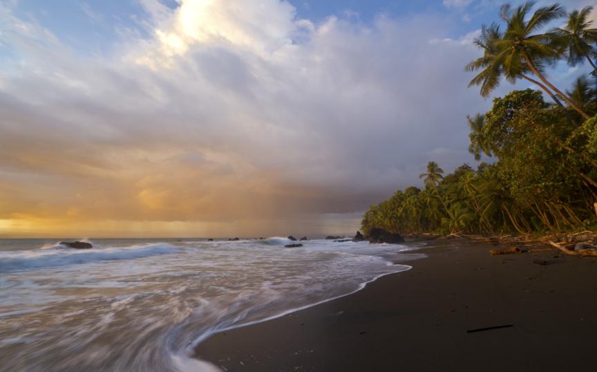 La Playa Ponderosa II