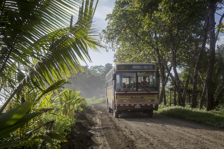 Pavones Bus