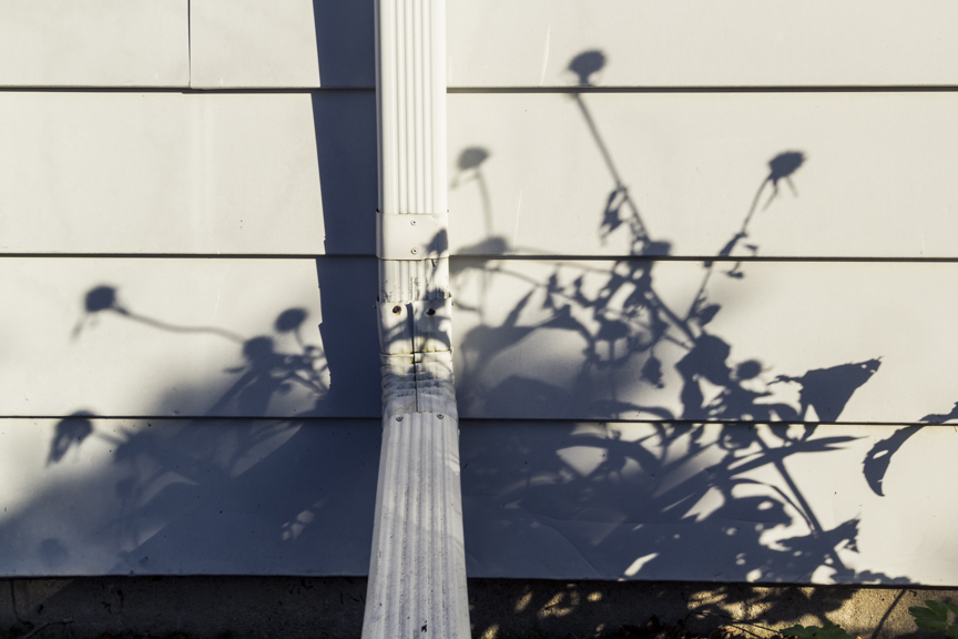 20141024_OctShadows_023.jpg