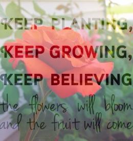 KK_Raising Up A Garden_GQ.jpg