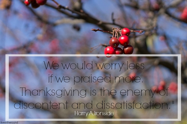 worry_thanksgiving
