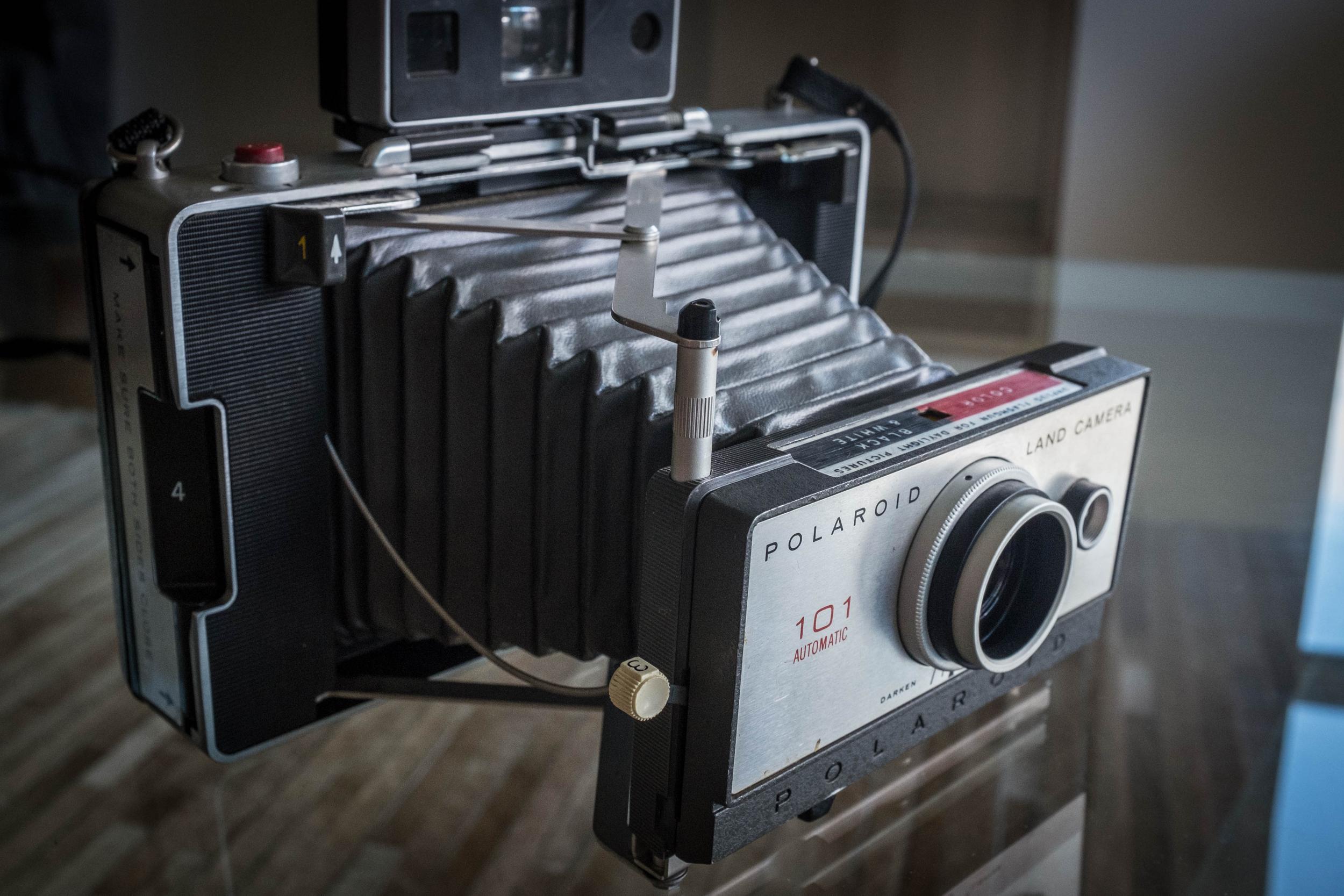 My Polaroid Land Camera 101