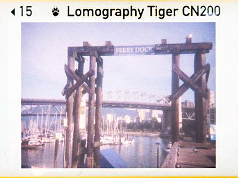 110 instamatic Lomo 200 Tiger-4.jpg