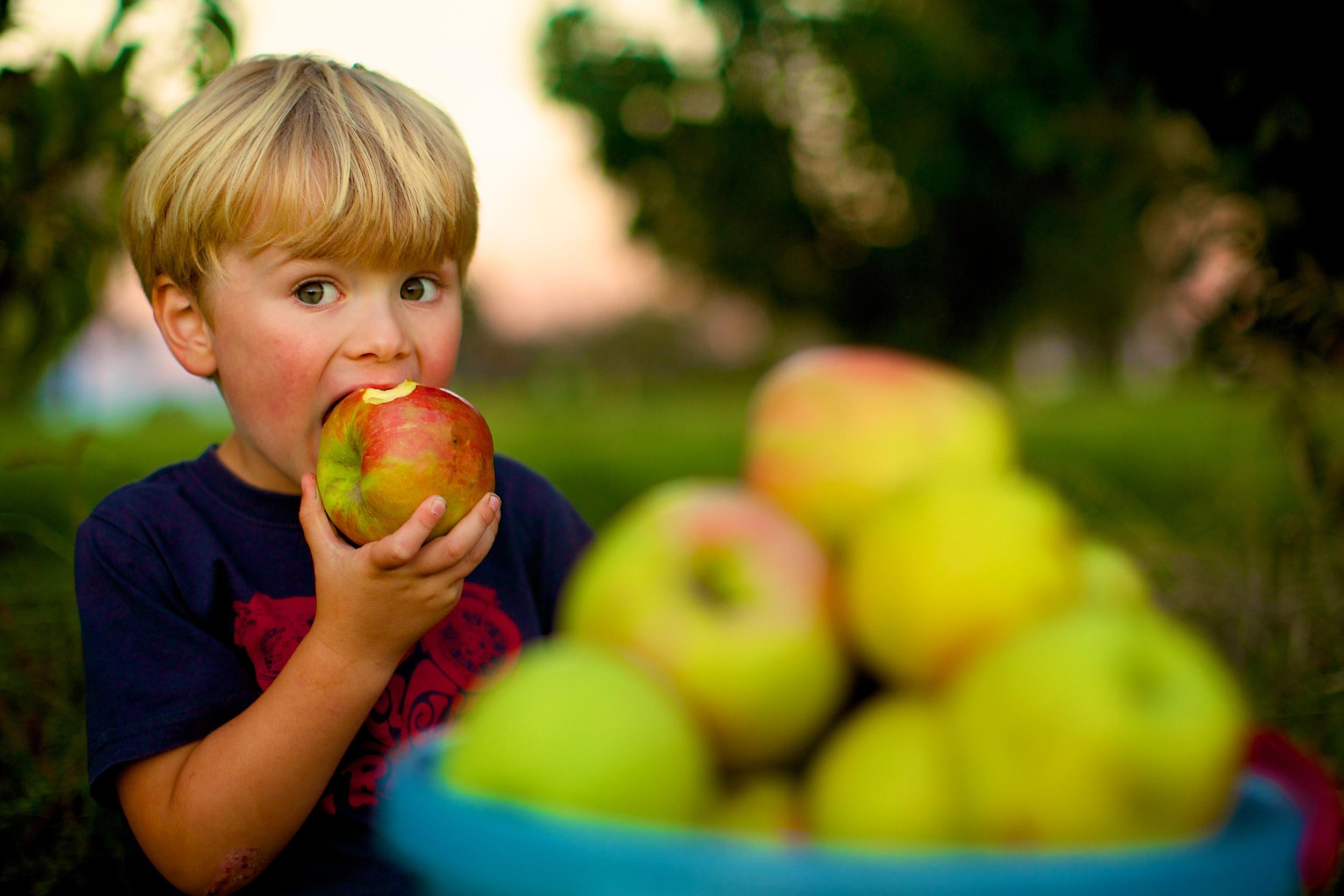 Jack Apple 456.jpg