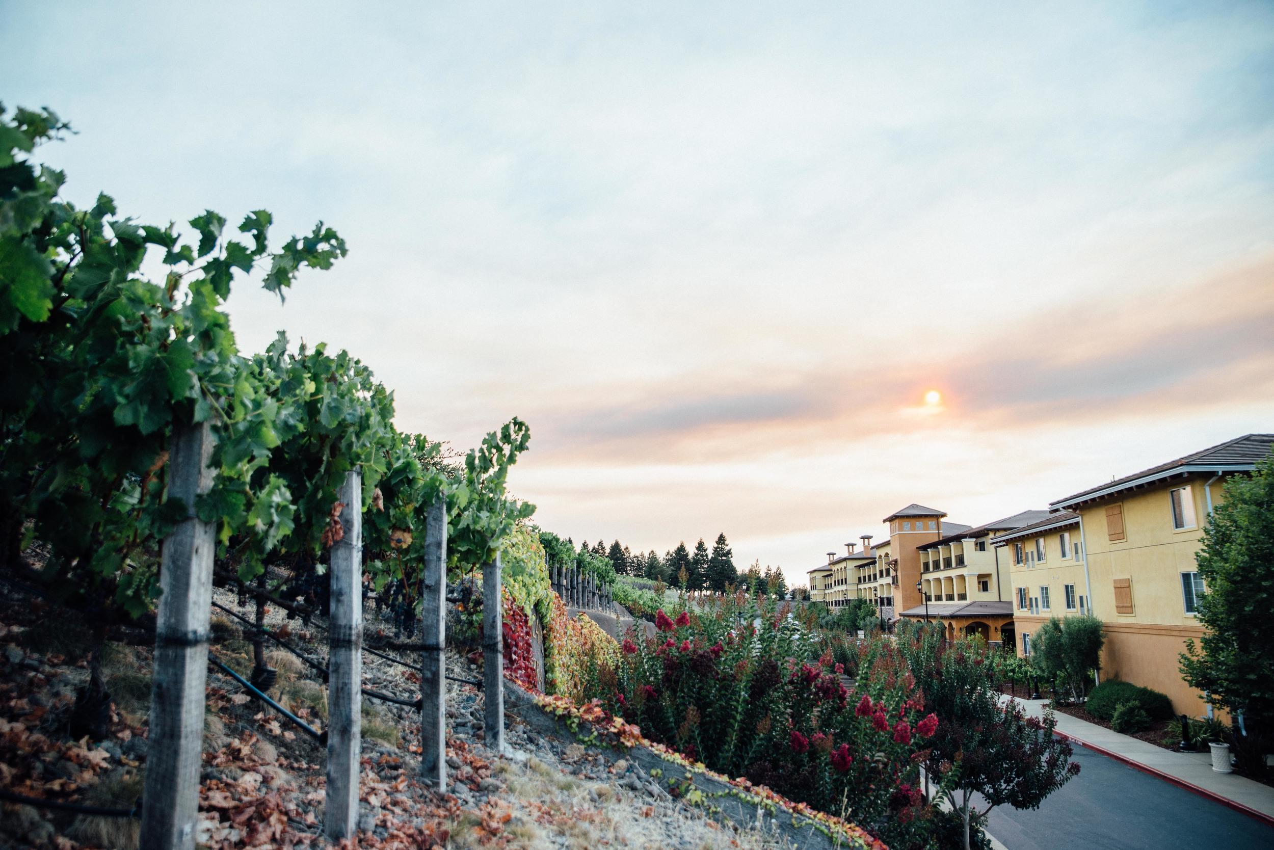 Vino Bello Resort, Napa, California