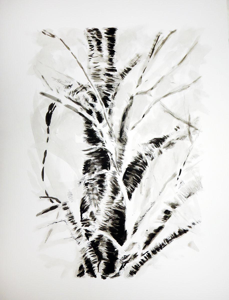Cherry Tree, by Patrick Willett