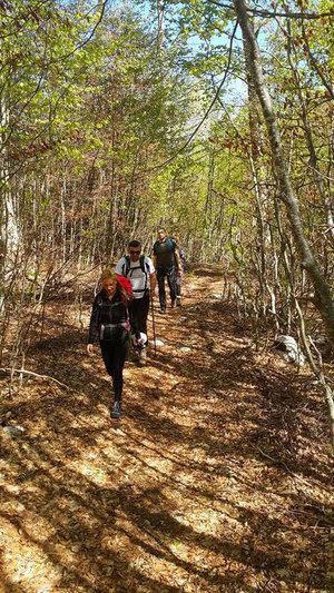 Planinarska staza prije Dobrog dola