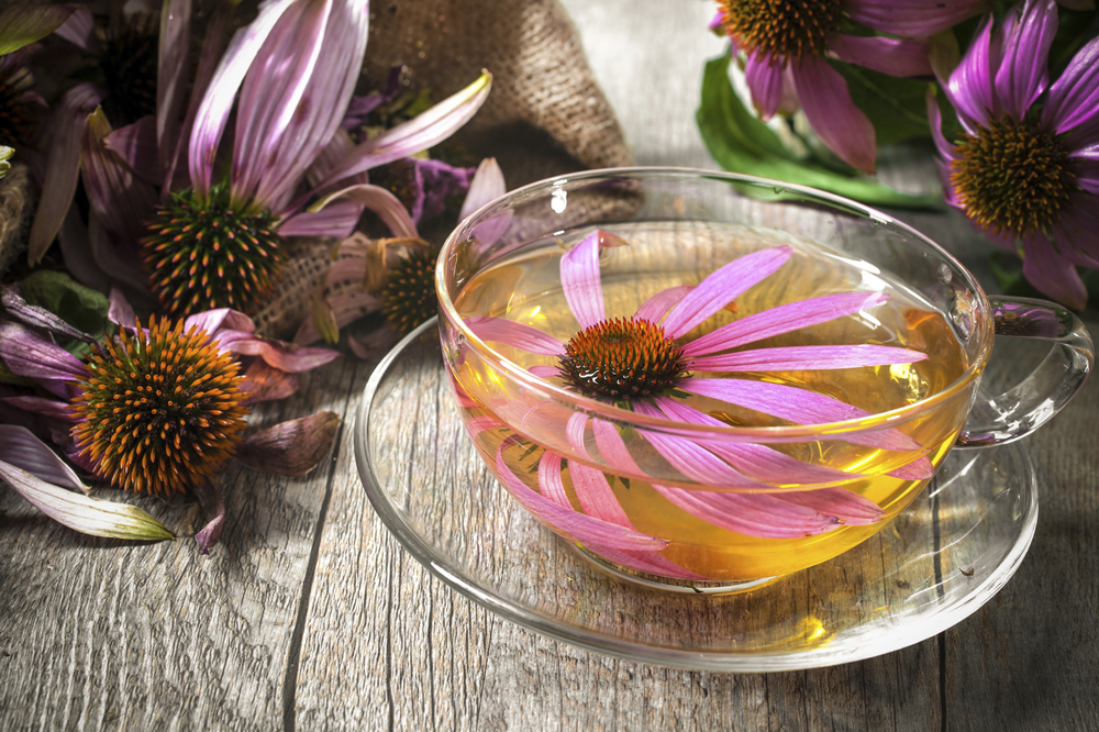 Natural immune boosting tea recipe -