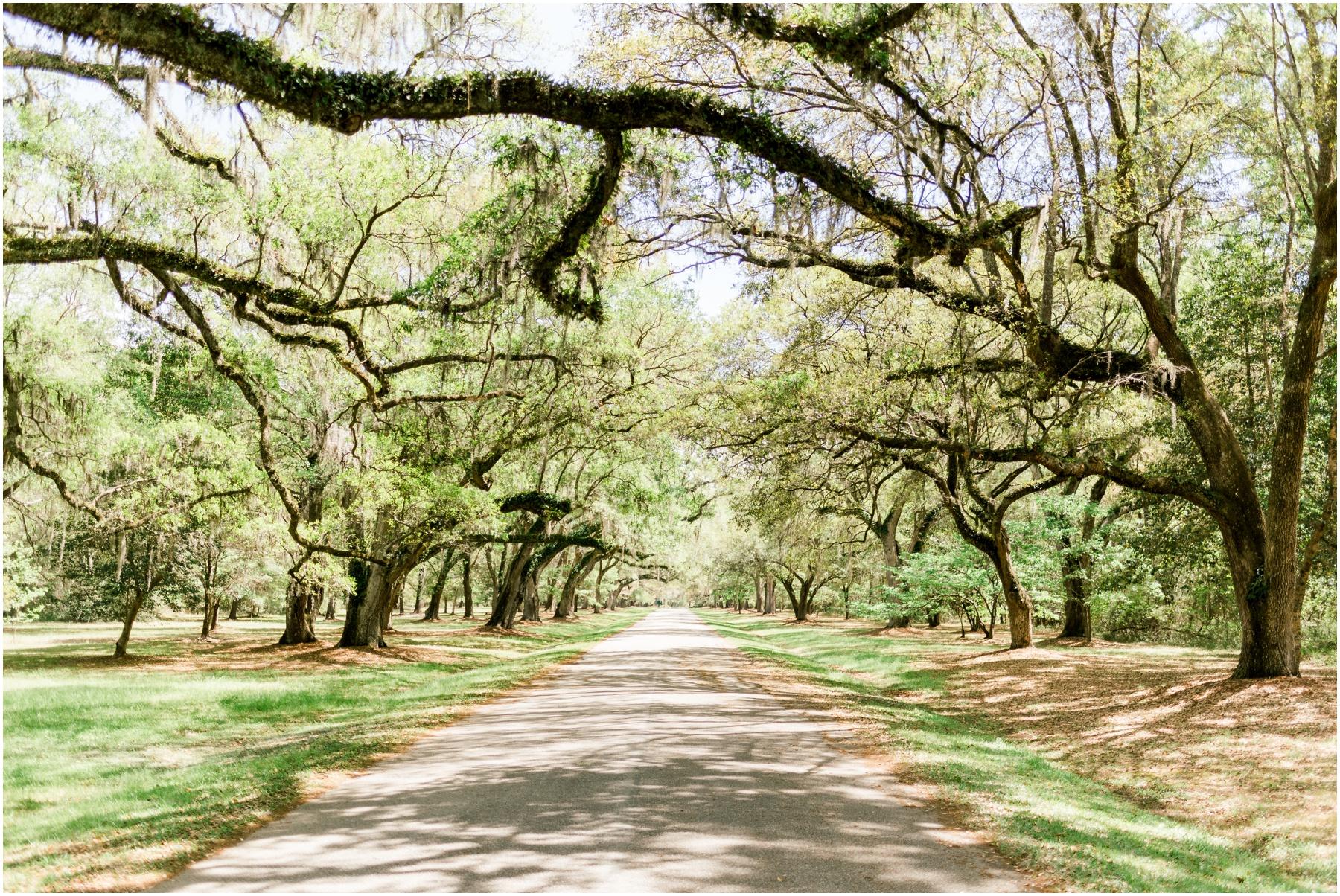 Mepkin-Abbey-Moncks-Corner-South-Carolina-Engagement-Session-Photos_0018.jpg