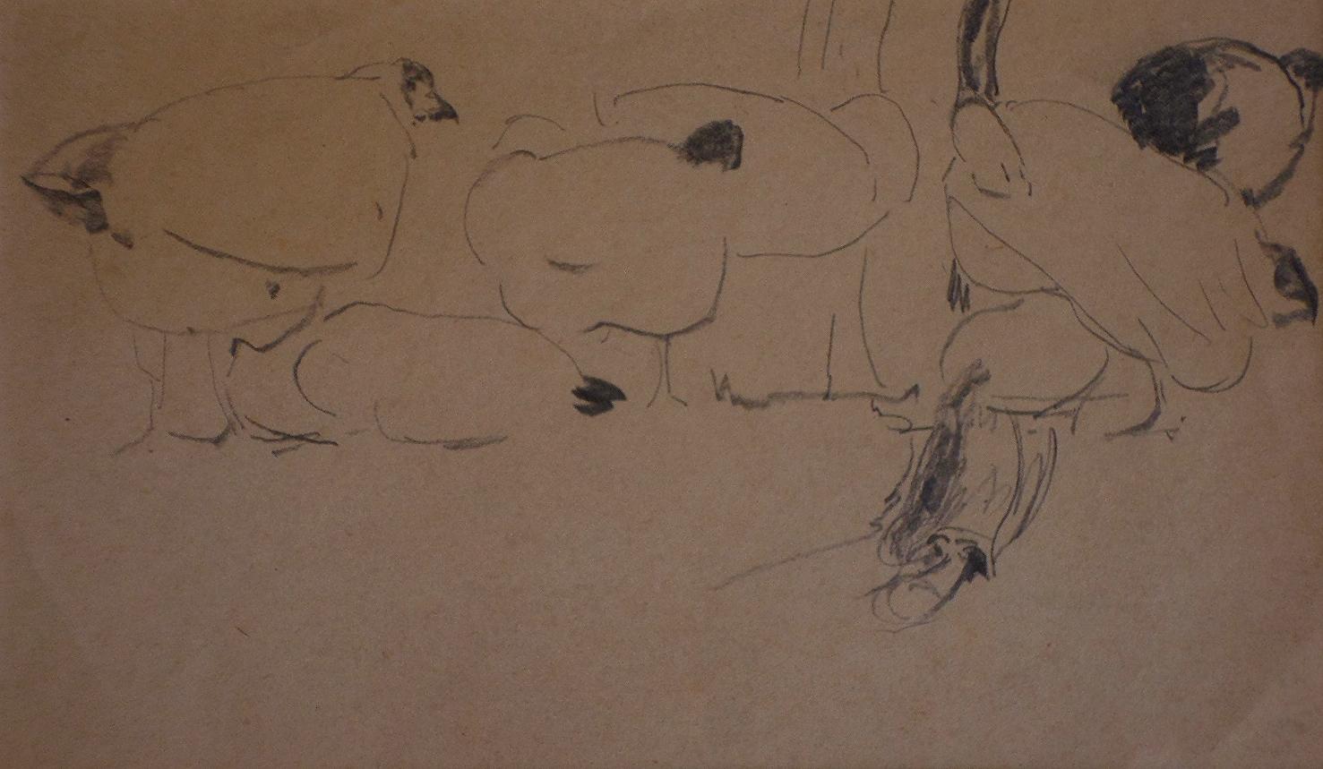 harry becker sketch