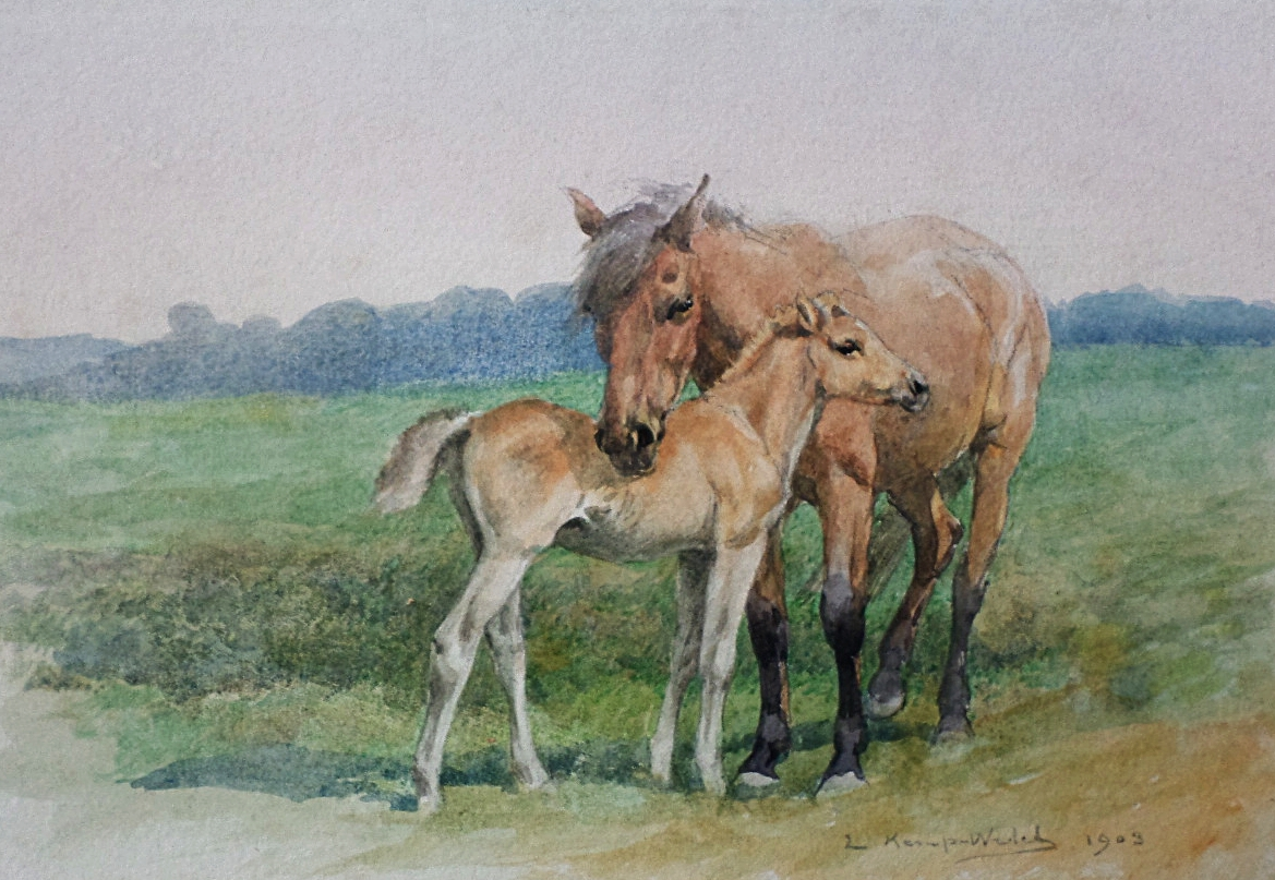 lucy kemp-welch  watercolour
