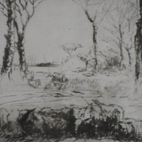 Sheep in field Etching