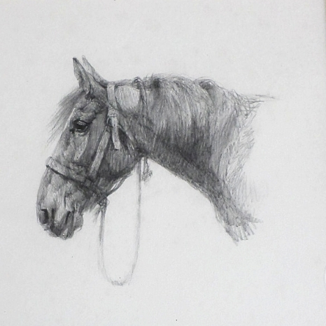 """SOLD- Pencil """"Old horse"""""""