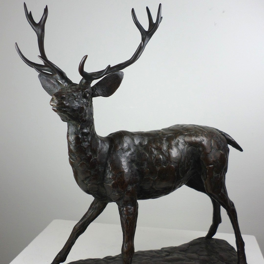 Stag 1971