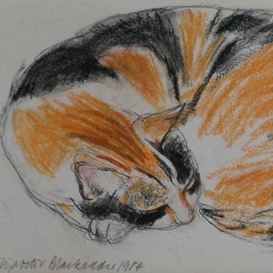 Sleeping cat 1984