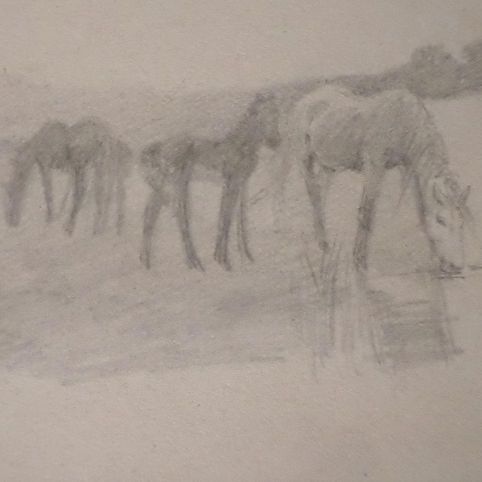 Ponies Grazing £650