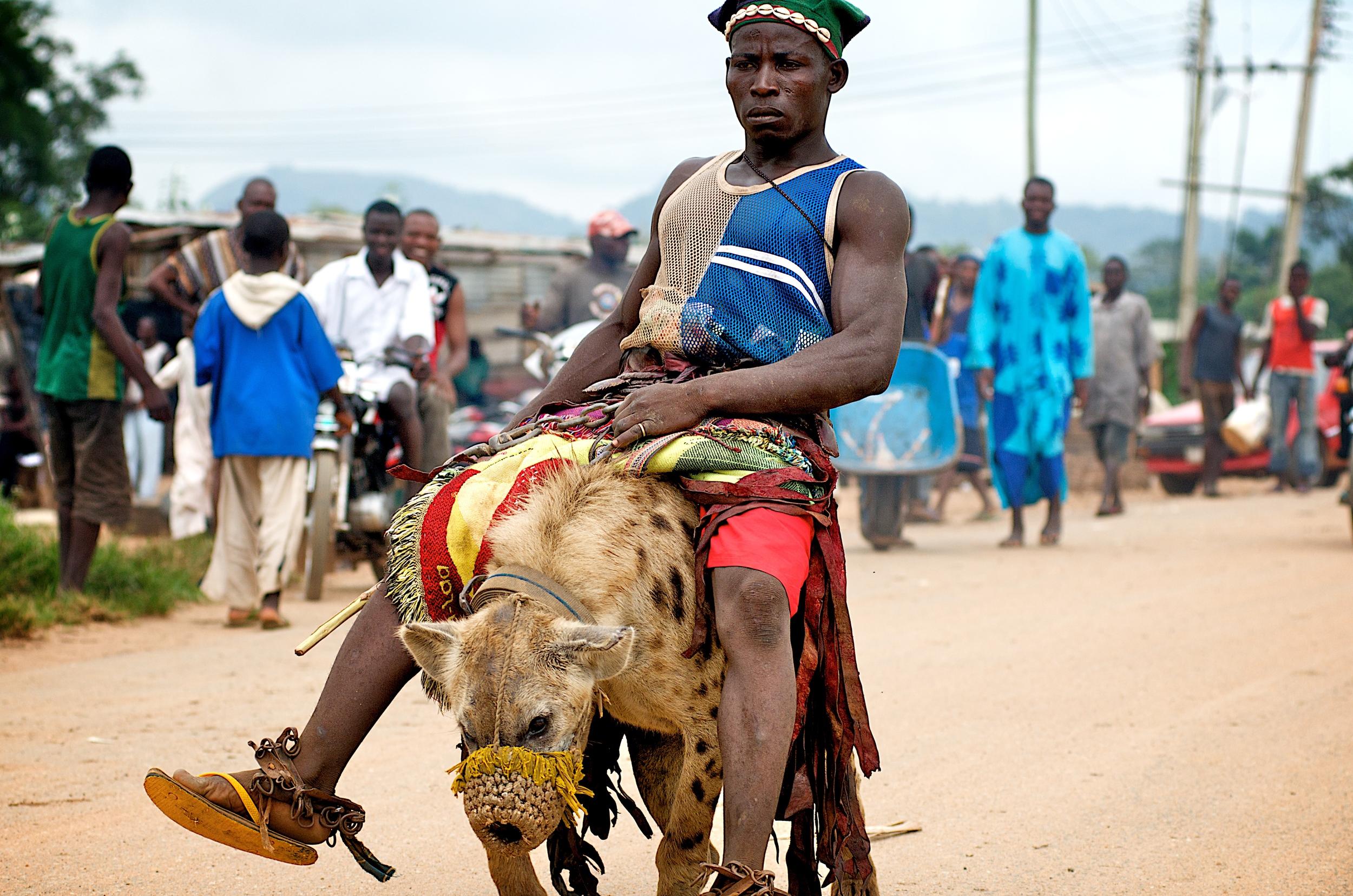 ride hyena.jpg