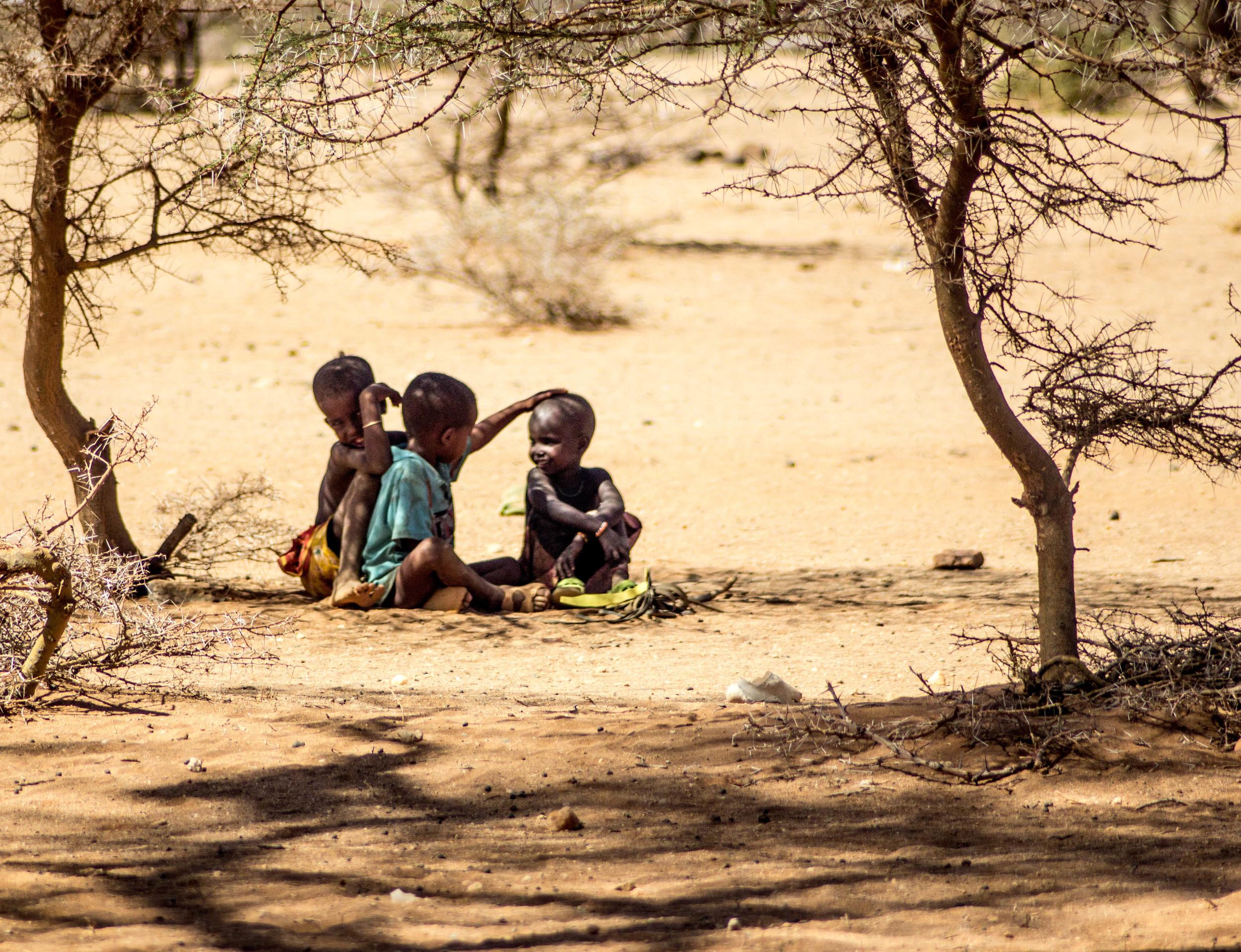 Rendille people northern kenya