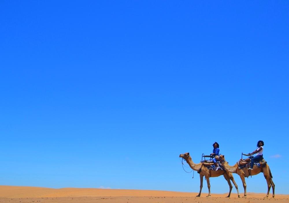 camels_dunes_spiritedpursuit.png