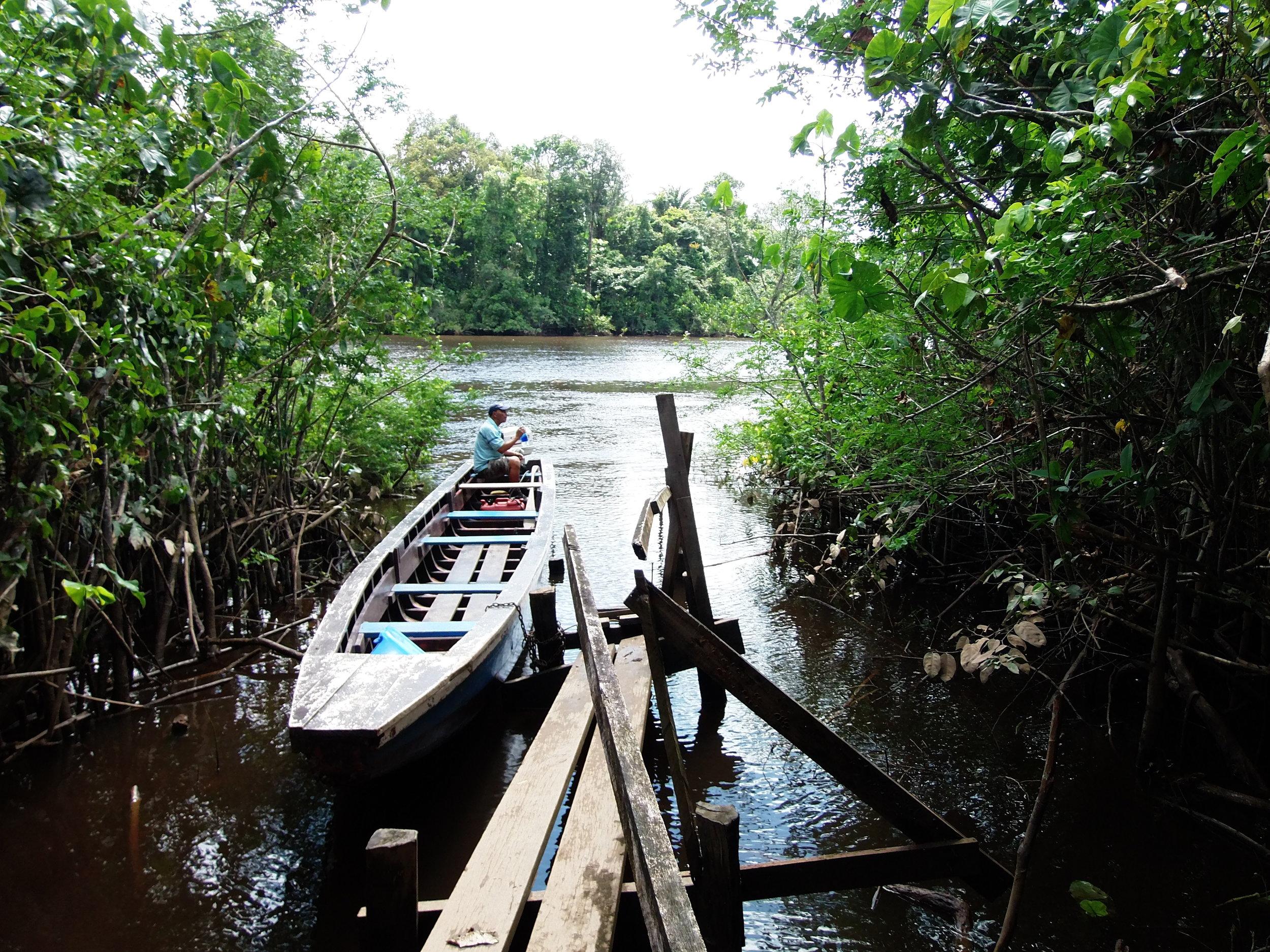 river w:boat.JPG