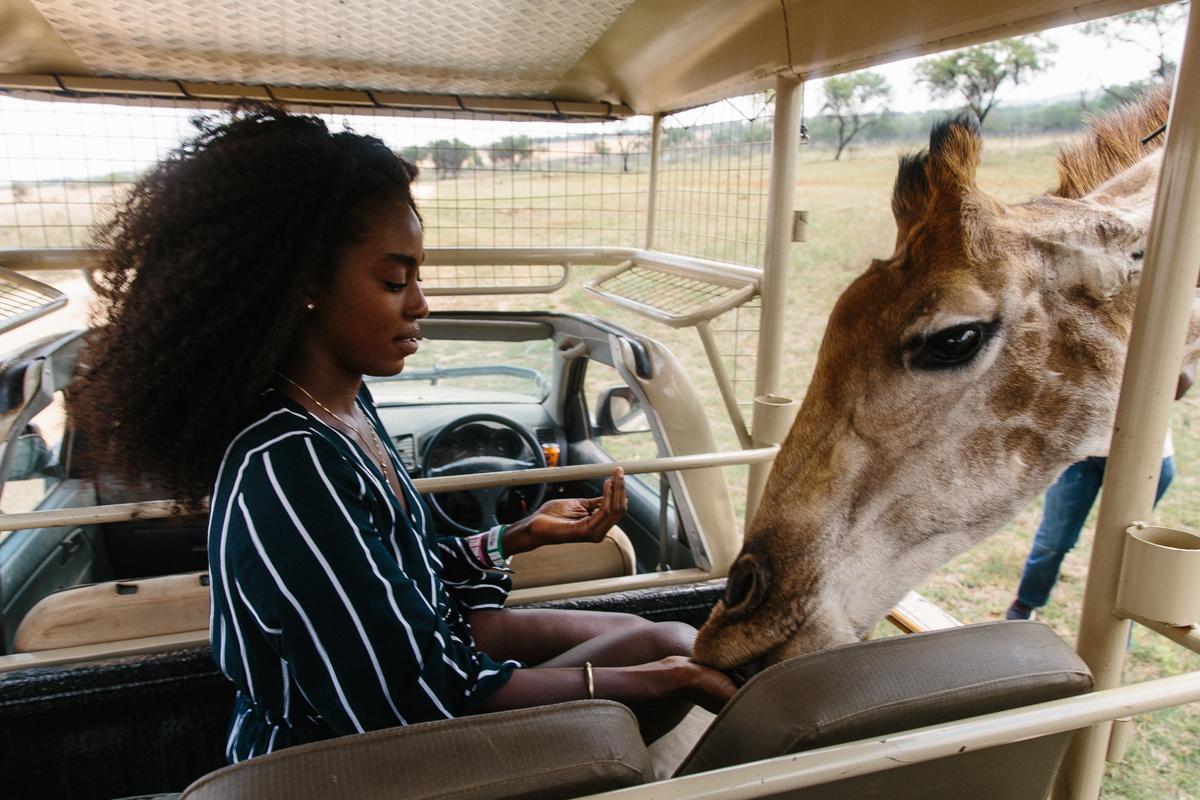 spiritedpursuit_leelitumbe_lionsafaripark-19.jpg
