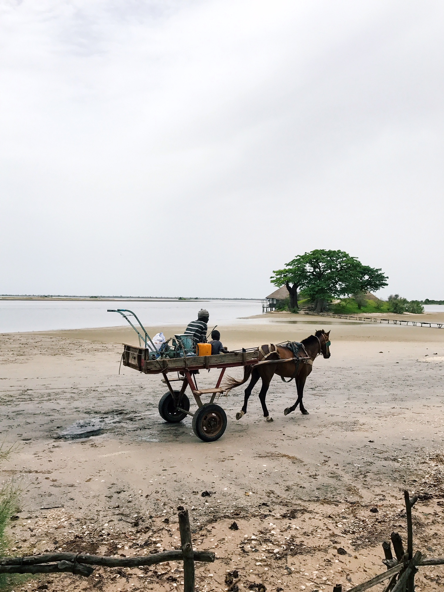 Horse cart.JPG