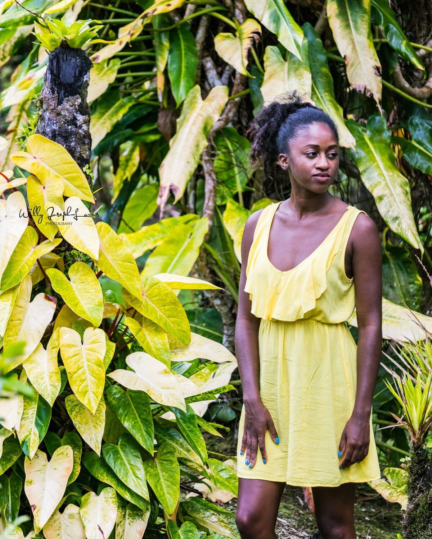 francesca yellow dress.jpeg