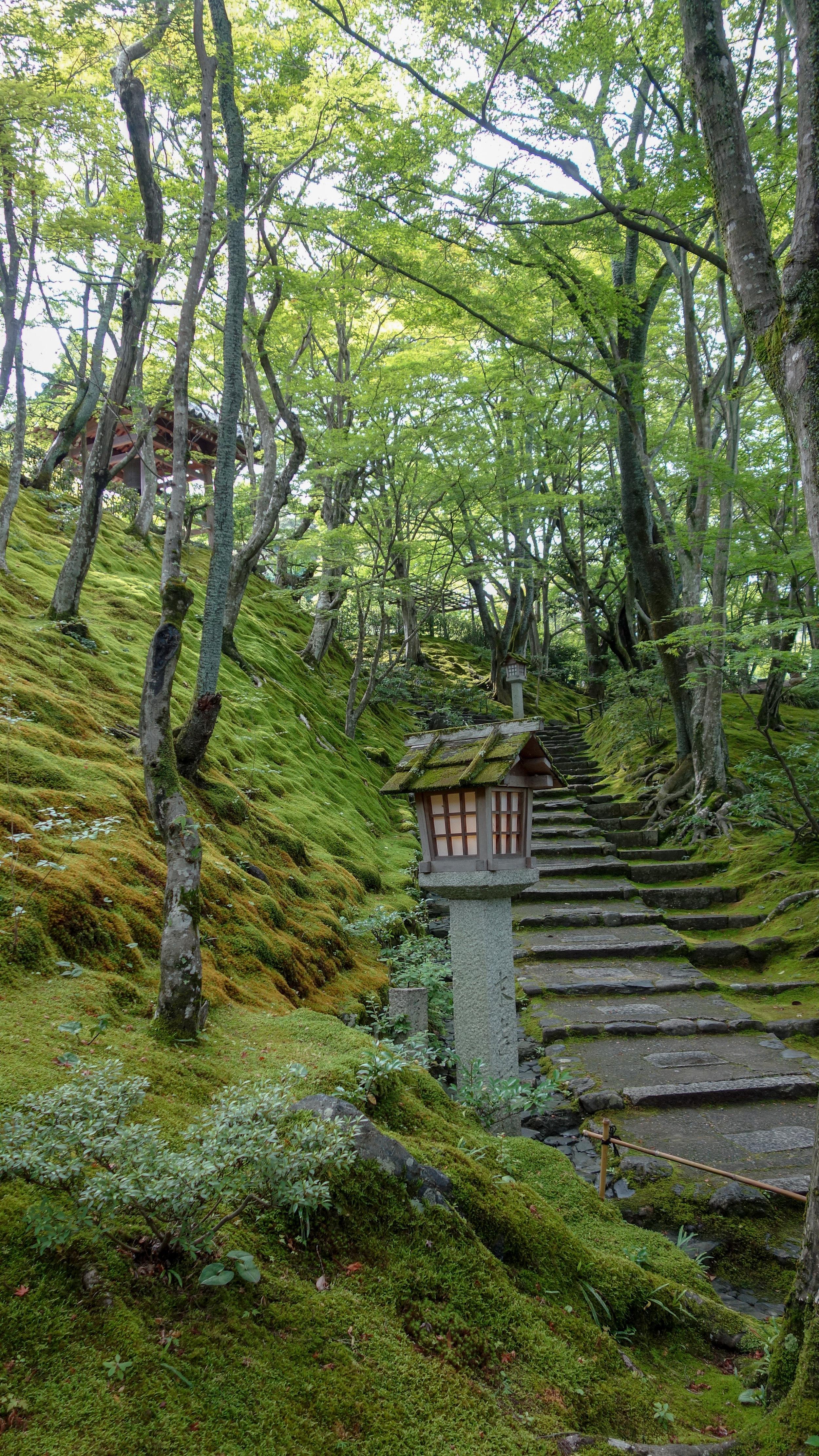 Jojakko-ji-kyoto.jpg