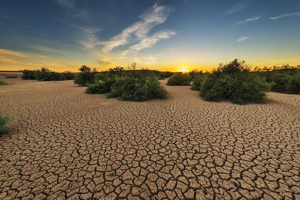 drought-1675729_960_720.jpg