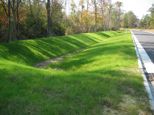 A swale (Image Source:  Affordable Housing Institute )