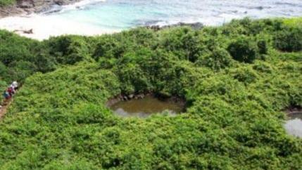 Bomb Crator at Isla Iguana
