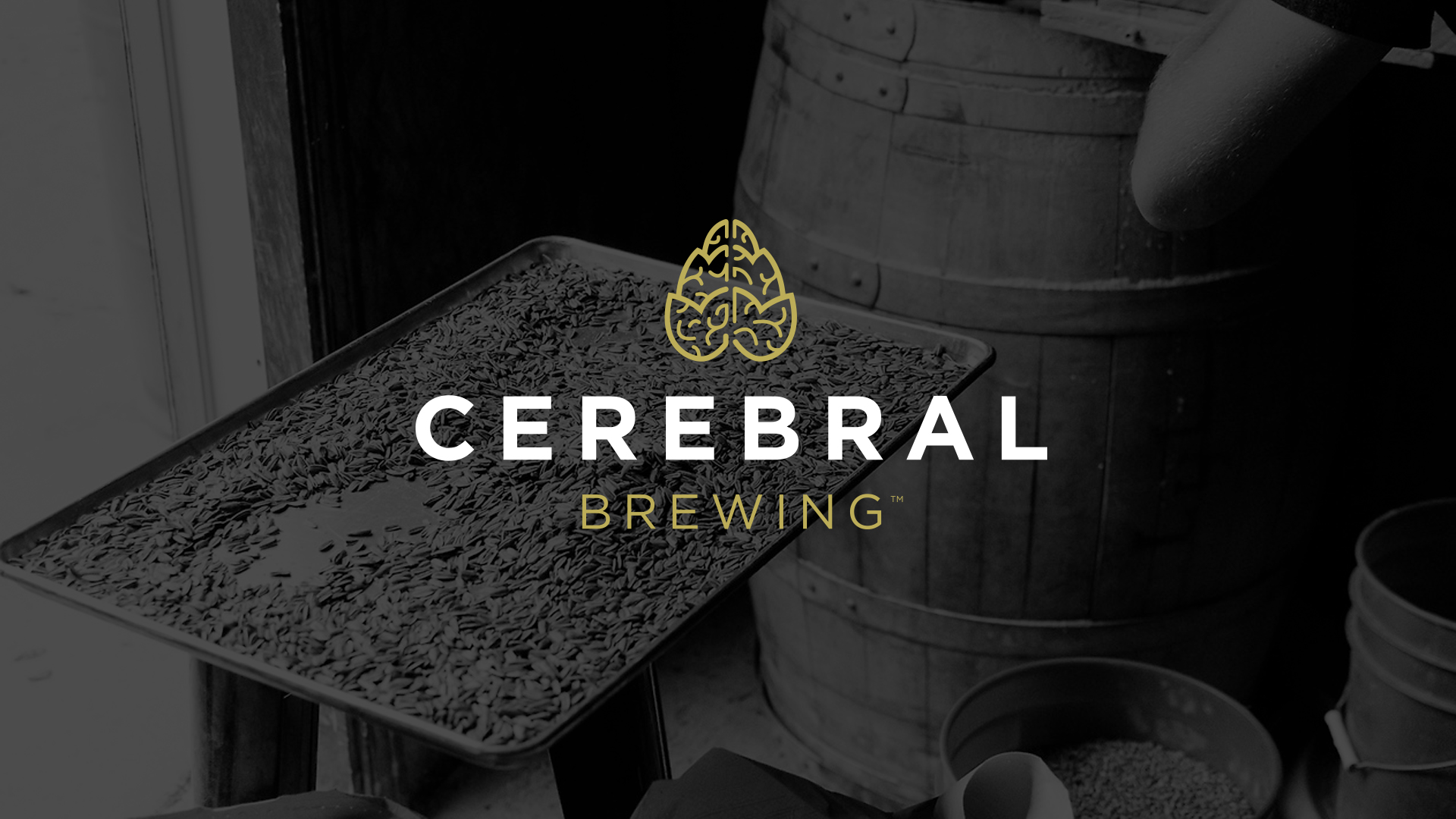 Cerebral Brewing | Microbrewery