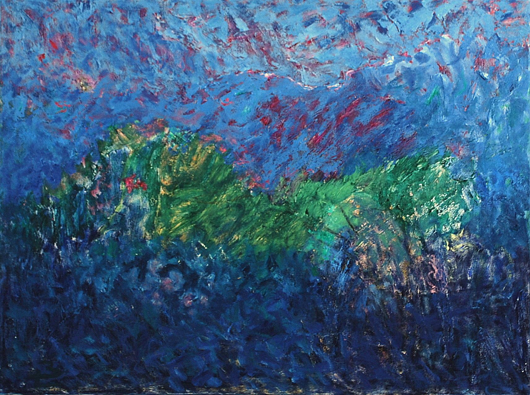 Bo Leander - Försvinnande landskap