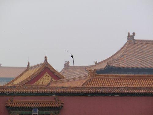 ChinaMongolia 143.jpg