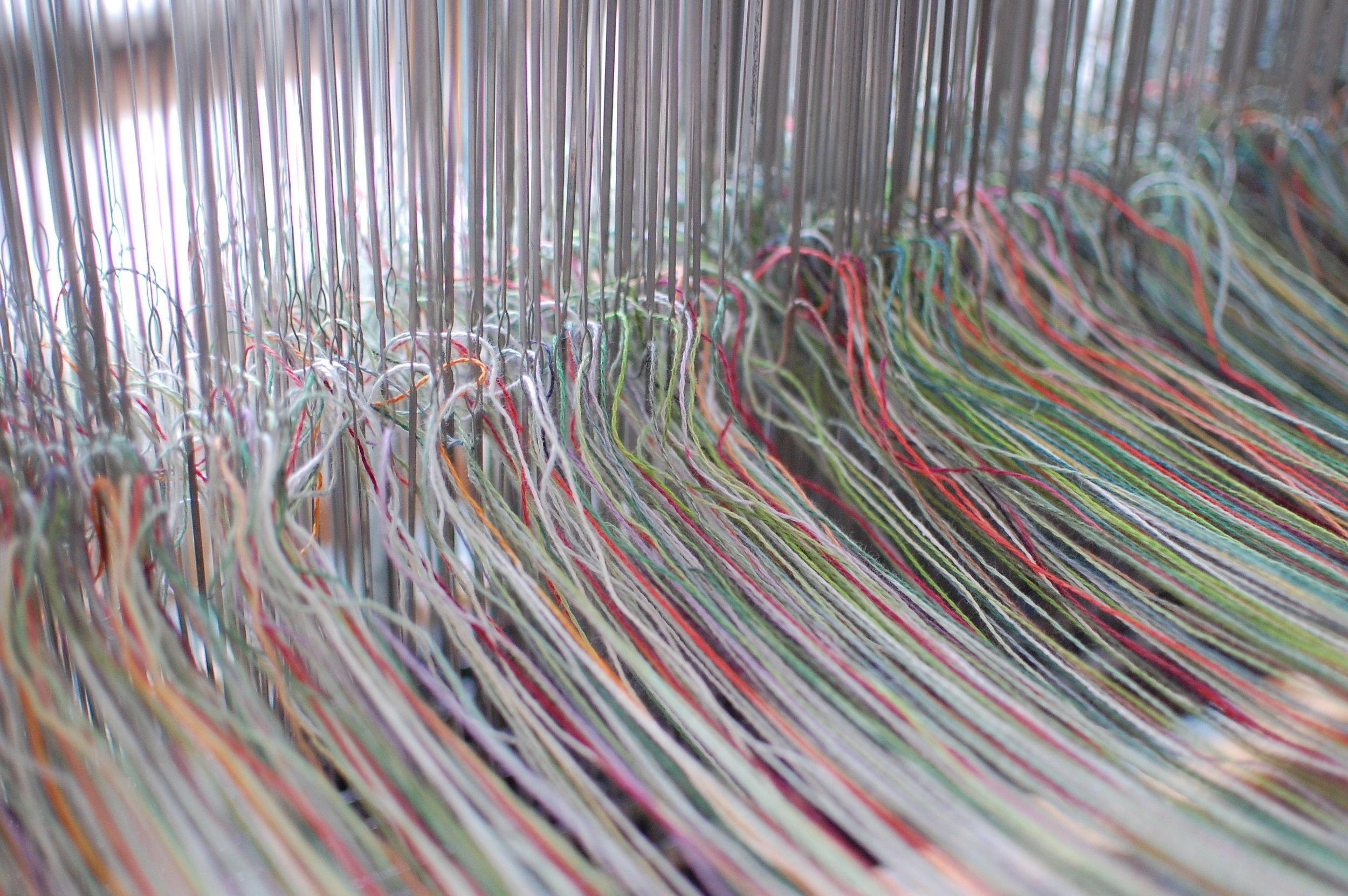 the warp - after threading each heddle