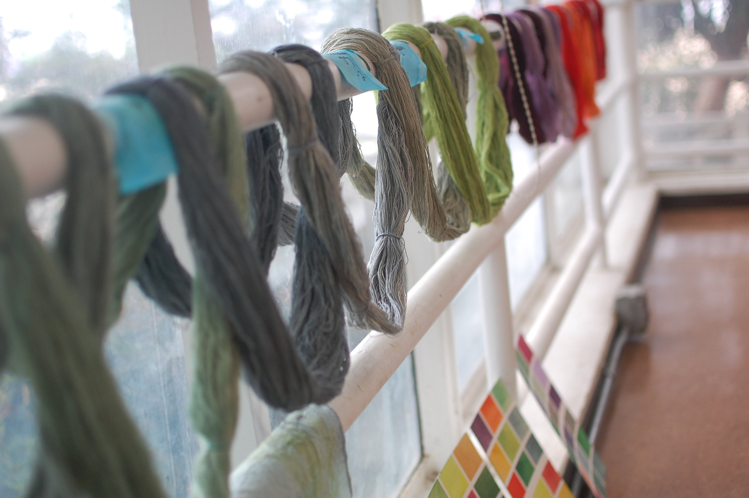 some of the dyed skeins of yarn - shown with watercolor studies