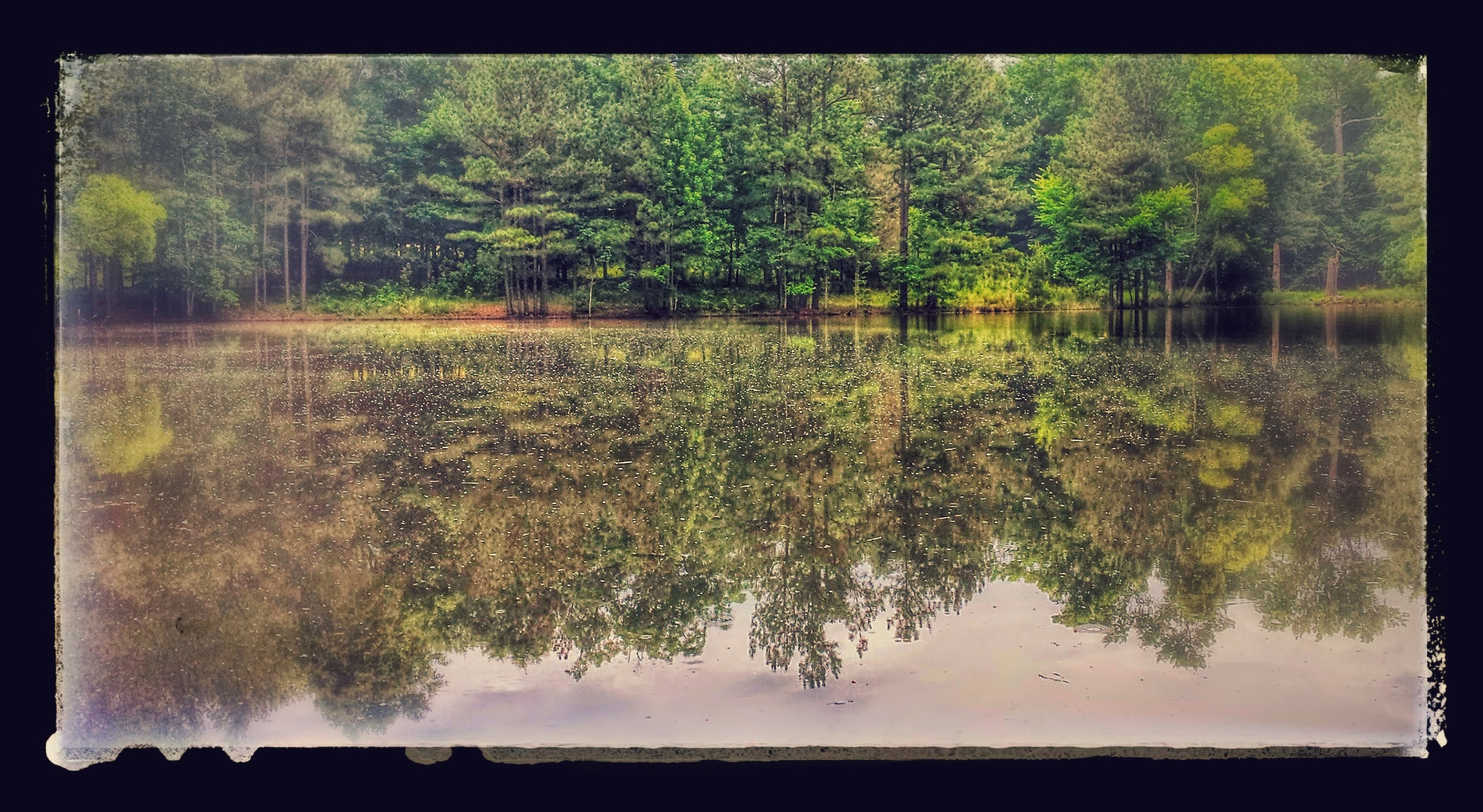 2acre Pond on 3630 Charlie Grissom Rd, Kittrell, NC 27544-EFFECTS.jpg