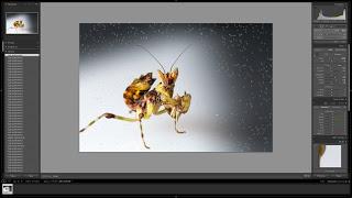 Screen+Shot+2013-04-24+at+6.10.16+PM.png