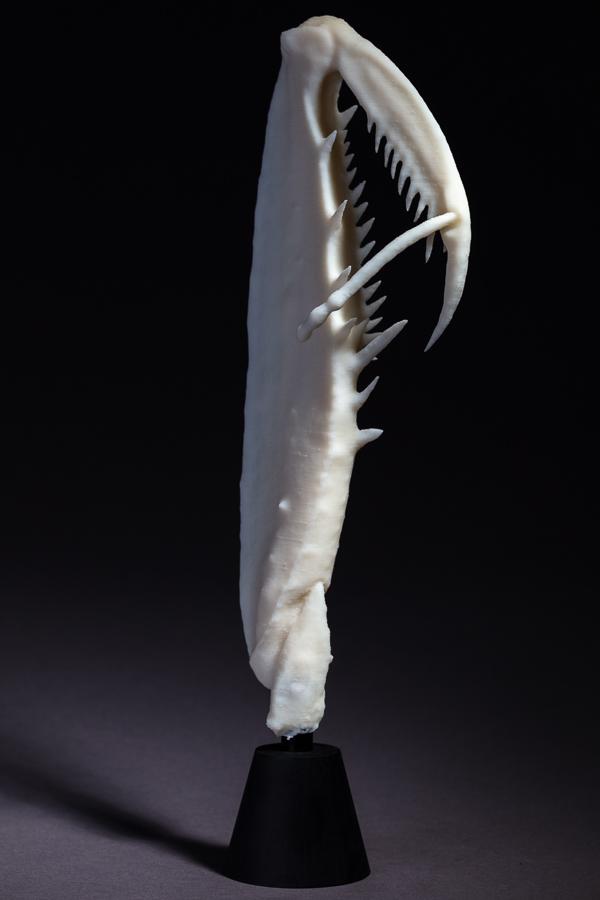 Mantis Arm