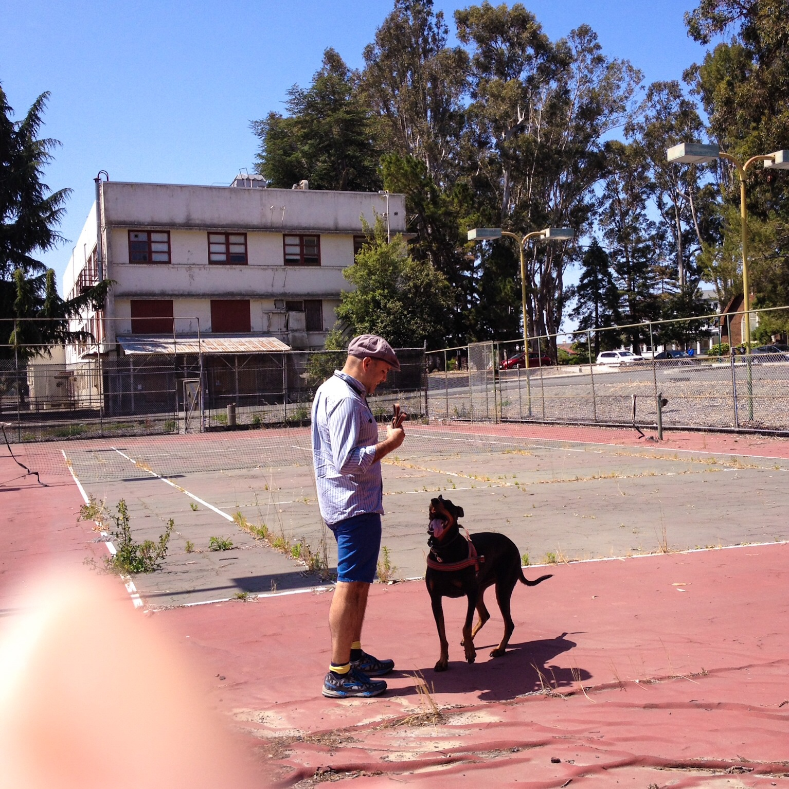 Chloe and Albert on Abandoned Tennis Court; Mare Island, CA