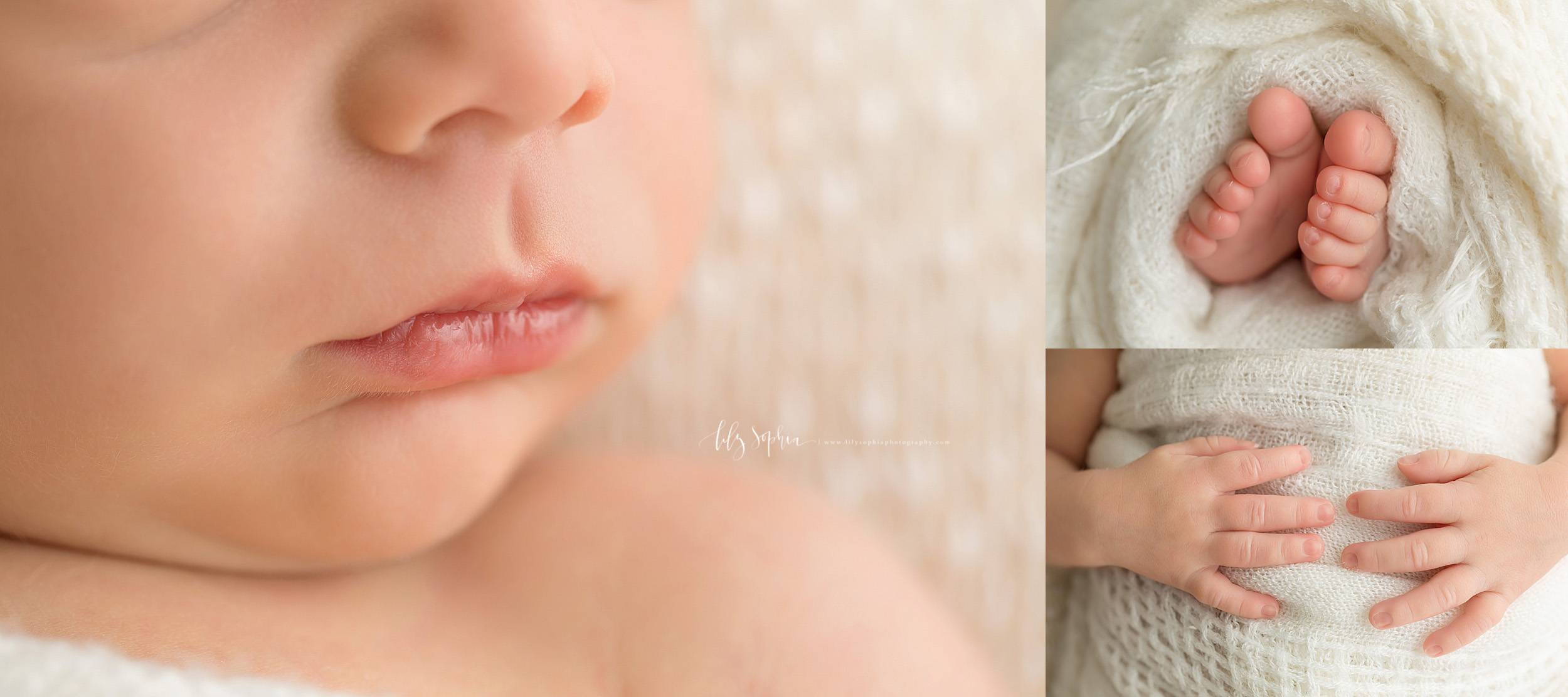 Photo of newborn boy's attribute collage.  The delicate lips, tiny hands and fingers, and adorable toes are featured in this collage.