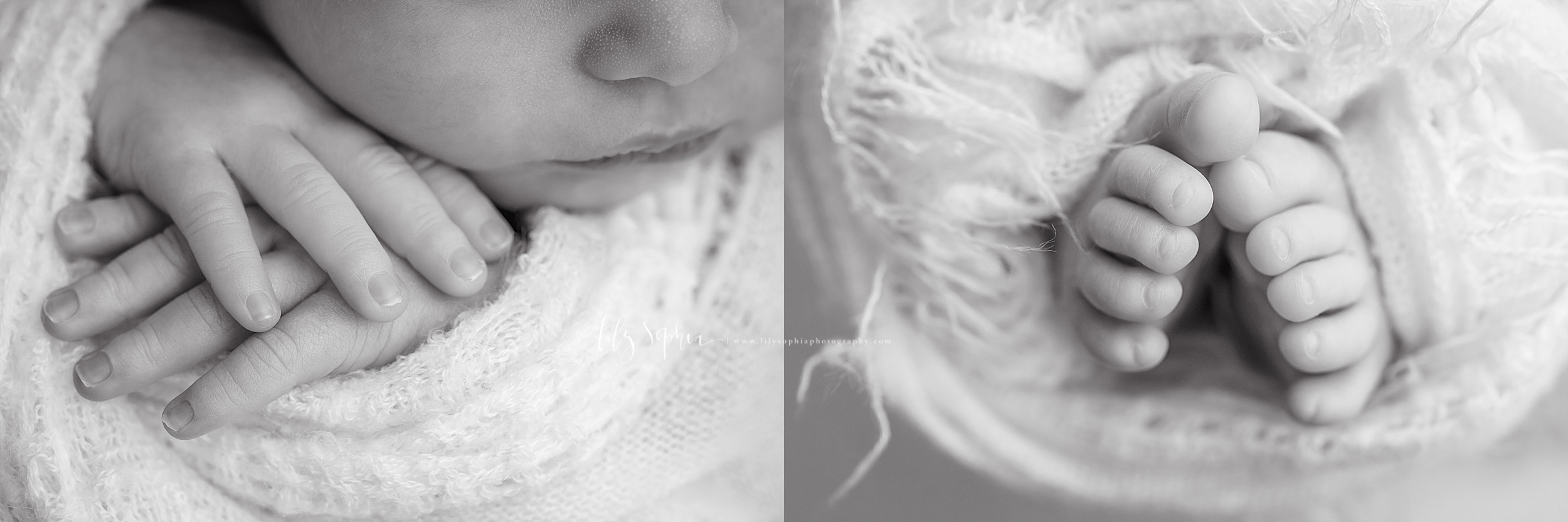 Split image of the delicate features of a newborn baby boy's hands and feet taken by Lily Sophia Photography.