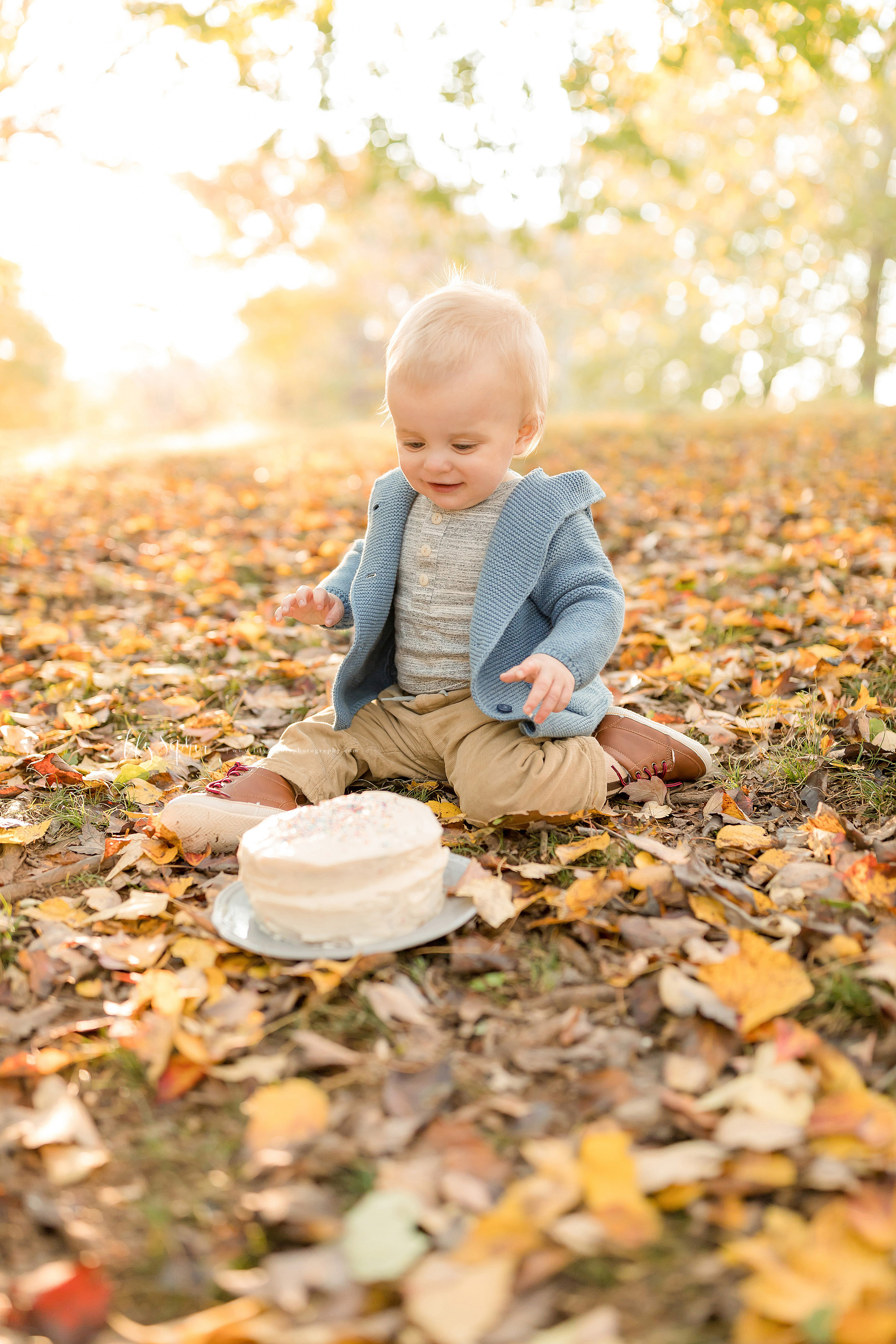 Milestone photo of a one year old eyeing his first birthday cake during autumn in an Atlanta park at sunset.