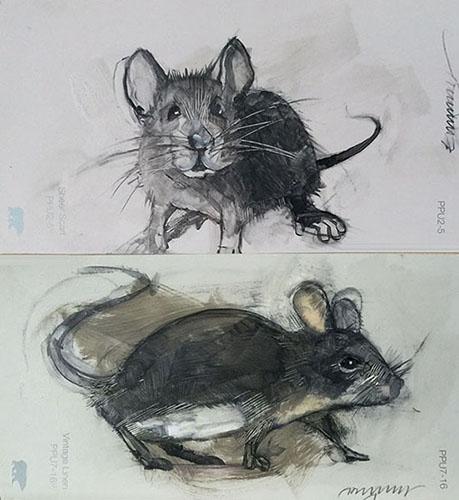 Mouse Portrait #5