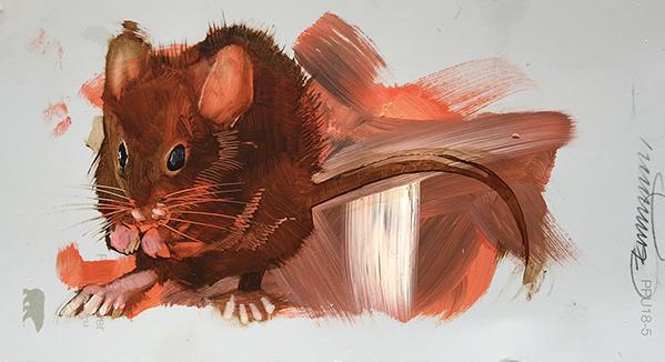 Mouse5erd78EM.jpg